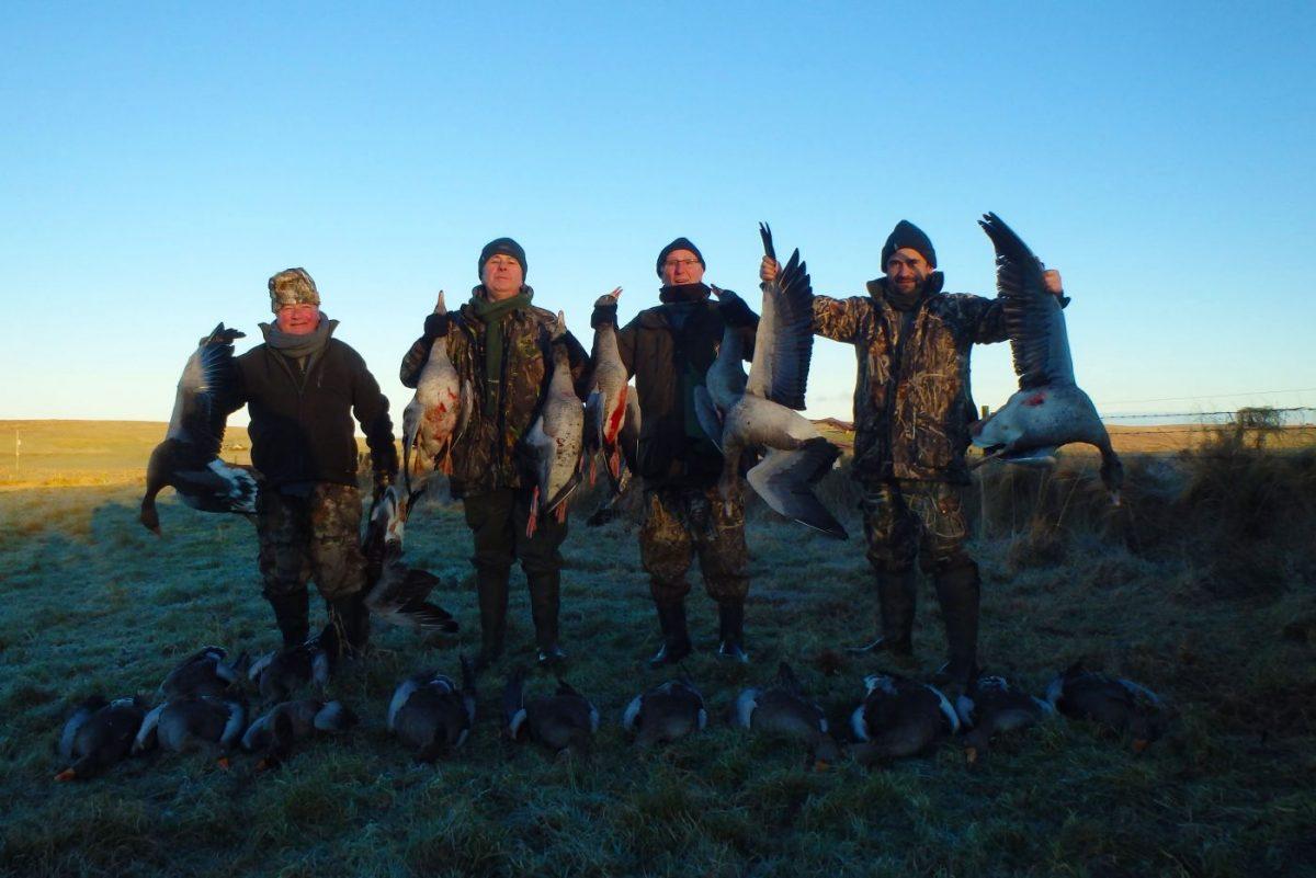 tableau de chasse avec des oies
