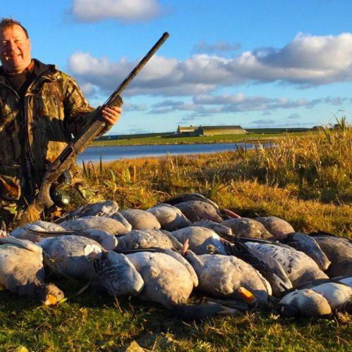 tableau de chasse d'oies