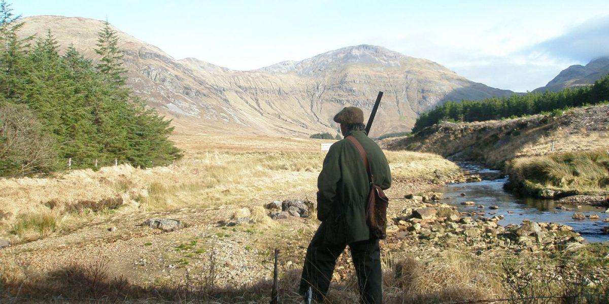 chasse en Irlande