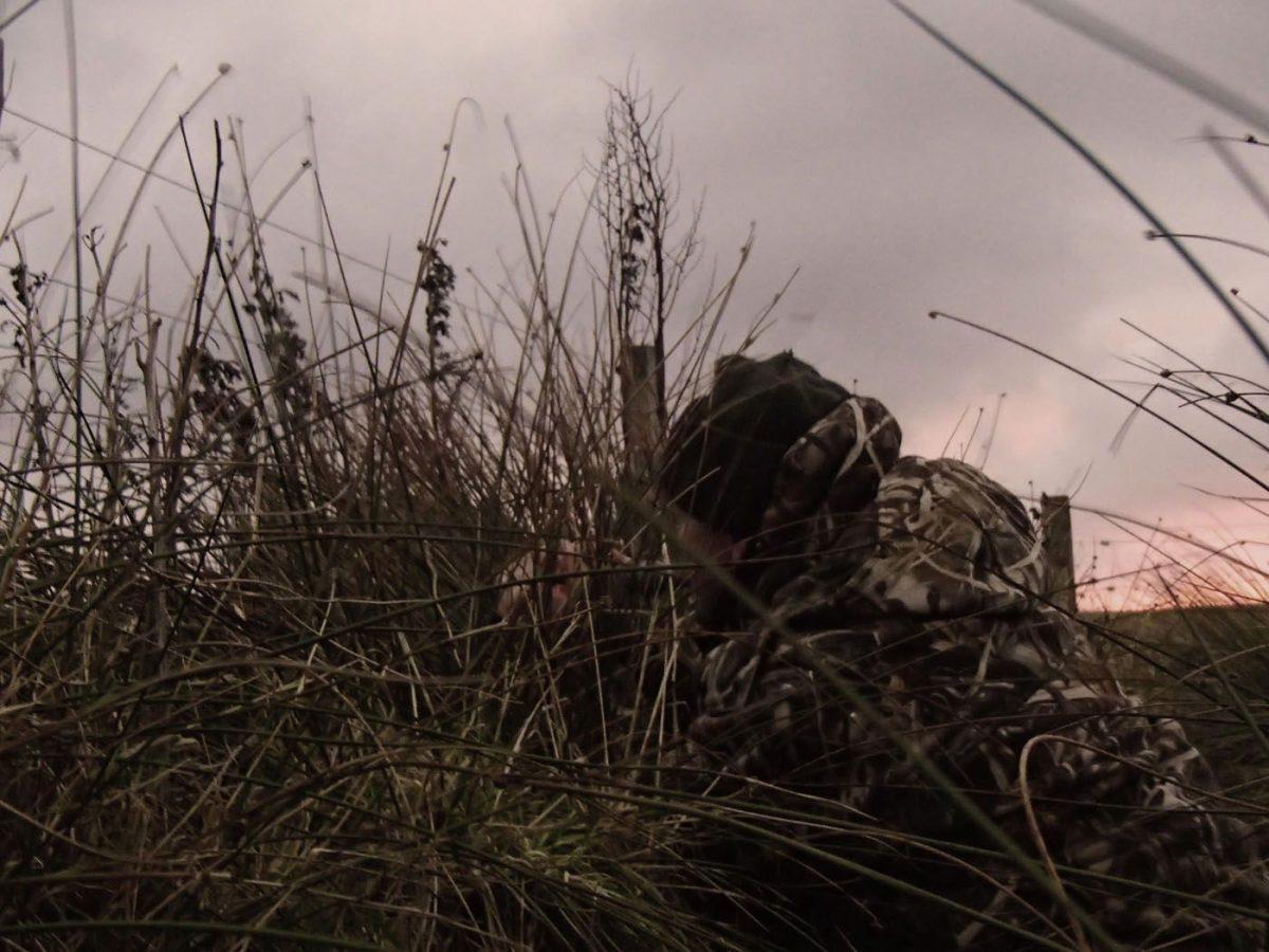 Voyage organisé de chasse à l'oie et au canard en écosse